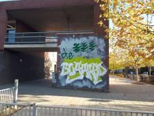 Basisschool Ravenstein verwijdert muurschildering na protesten buurt
