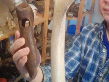 Bij Dreumel komen unieke prehistorische bijlen van gewei uit de klei