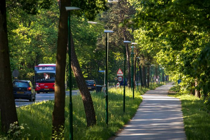 Buslijn 321 rijdt over de N615 en is een van de meest gebruikte verbindingen van heel Noord-Brabant