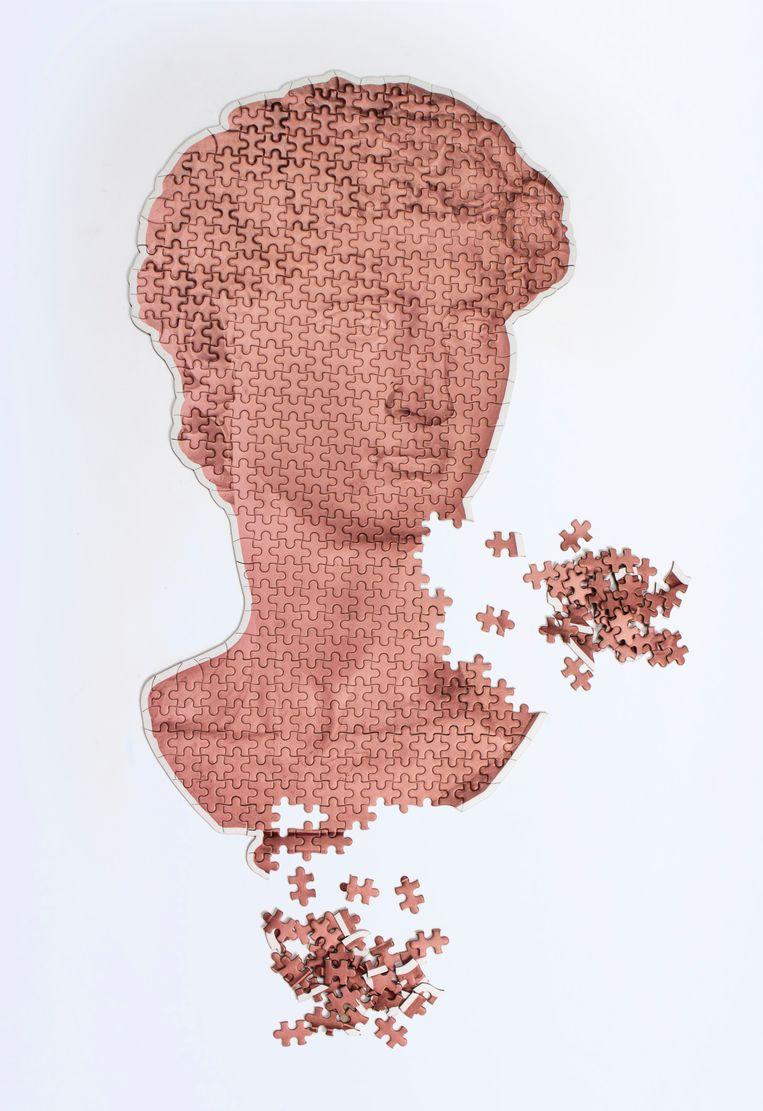 'David'-puzzel 500 stukjes, € 16,95. doiydesign.com Beeld