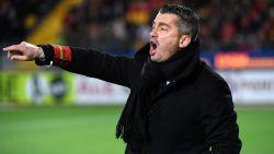 Adnan Custovic is de nieuwe trainer van Waasland-Beveren