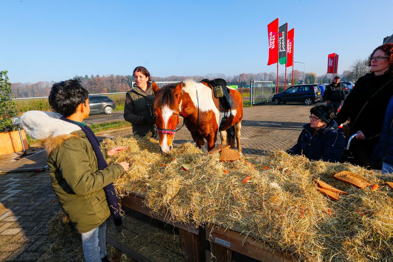 Als een actie van de vernieuwde Boerenbond konden paarden en pony's zich te goed doen aan een buffet.