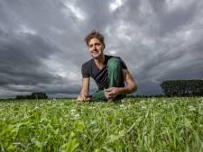 Brummense melkveehouder deelt succesrecept voor gezonde melk