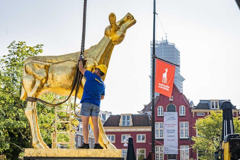 Het grote standbeeld van het Gouden Kalf, icoon van het NFF staat tot 2 oktober op de Neude in Utrecht. Beeld Koen Laureij/ANP