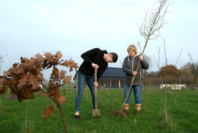 Cindy Gerritsen en haar zoon Thomas (18) planten de boompjes.