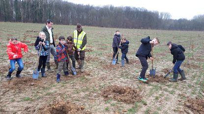Schoolkinderen helpen 10.000 bomen en struiken planten