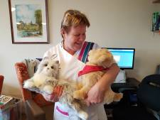 Robothonden en -katten zijn groot succes in Leerdams verpleeghuis