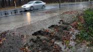 Vernieuwde Herentalsesteenweg (N13) kan eerste regenbui niet slikken