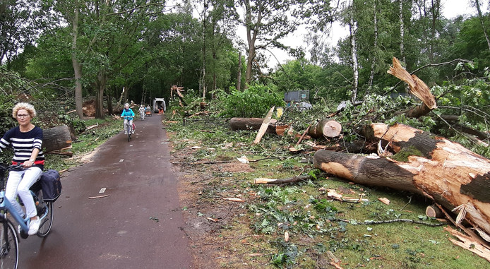 Ravage aan de Sondervick in Veldhoven een dag na de storm.