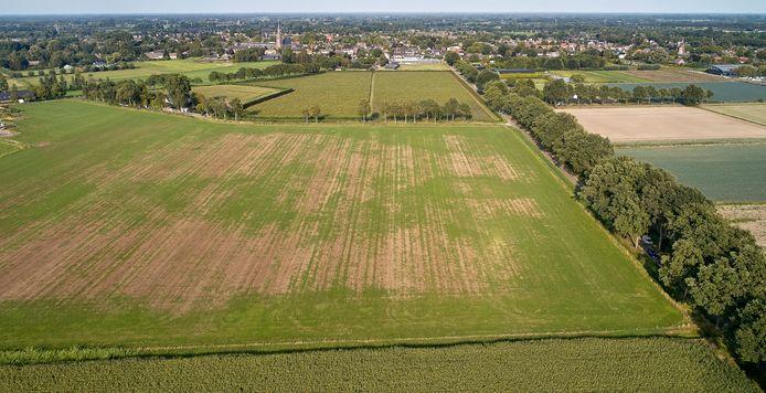 Het buitengebied van Den Dungen staat regelmatig in de belangstelling. Dan voor windturbines, dan weer voor de komst van iets anders.