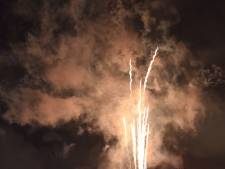 VVD in Overbetuwe wil centrale vuurwerkshows en vuurwerkvrije zones