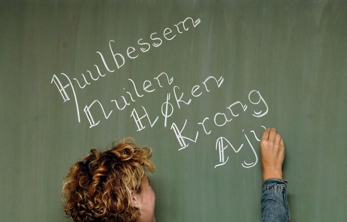 Achterhoekse woorden op een schoolbord.