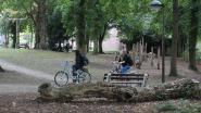 Gemeente wil betere verlichting in Warandepark en vraagt politie er regelmatig te patrouilleren