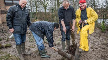 Rotary en Mivalti planten 350 bomen