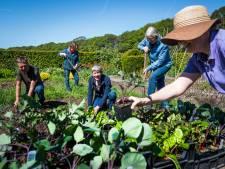Hobby op lapje grond mondt in Wolfheze uit in trekpleister voor tuinfreaks