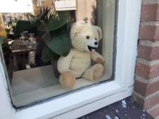 Beren verbroederen in moeilijke tijden: 'We gaan op berenjacht!'