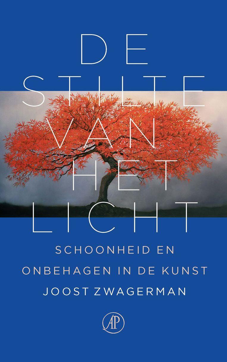 De Stilte van het Licht, het boek van Zwagerman dat vandaag verschijnt Beeld De Arbeiderspers
