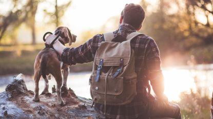 Een bucketlist voor honden: deze 7 dingen moet je zeker eens doen met jouw viervoeter