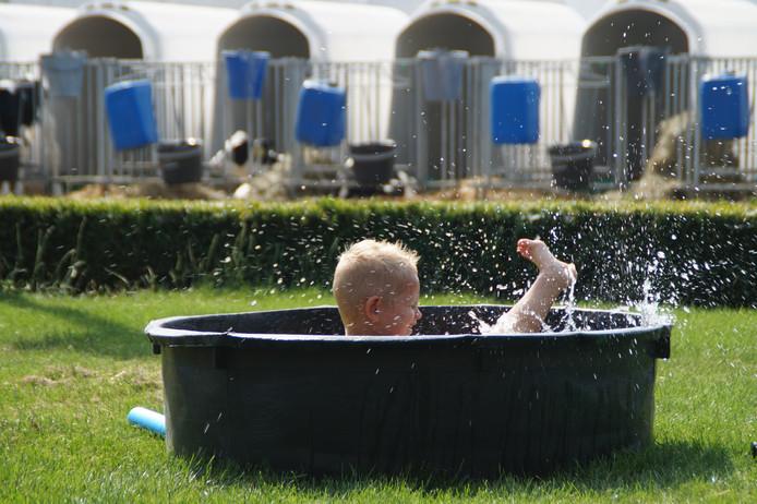 Spetter pieter pater, lekker in het water... In dit geval bij oma in een badje op de boerderij. Foto: Jenneke Scherpenzeel uit Nieuwland.
