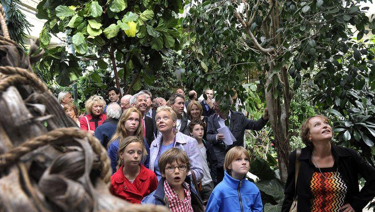 Kinderen in het Apenhuis Beeld anp