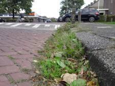 Gemeente Zaltbommel gaat onkruid met heet water en hete lucht te lijf
