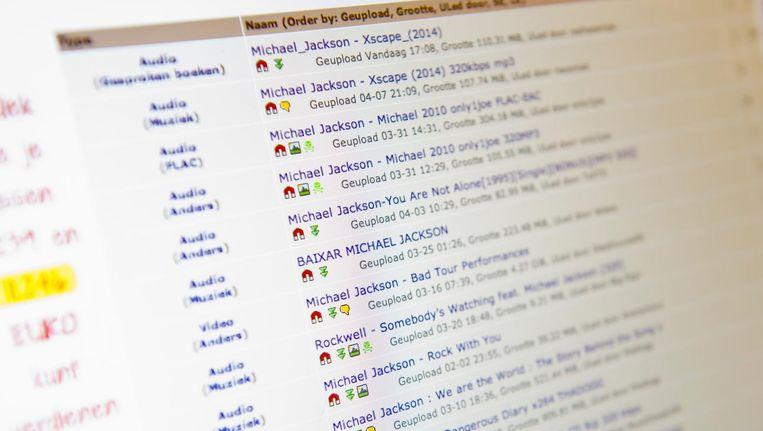Downloadsite the Pirate Bay. Beeld ANP