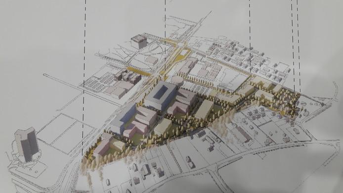 Nieuwbouwplan Born-Oost in Wageningen, pal ten oosten van de Campus. In de zuidwestelijke punt langs de Mansholtlaan is studentenhuisvesting gepland, verder is er vooral ruimte voor kennisintensieve bedrijven