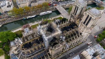 Waarom de Notre-Dame elke cent waard is: francofiel Bart Van Loo brengt ode aan dé kathedraal van Europa