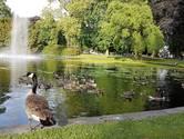 Hartje Breda: Levendig Valkenbergpark