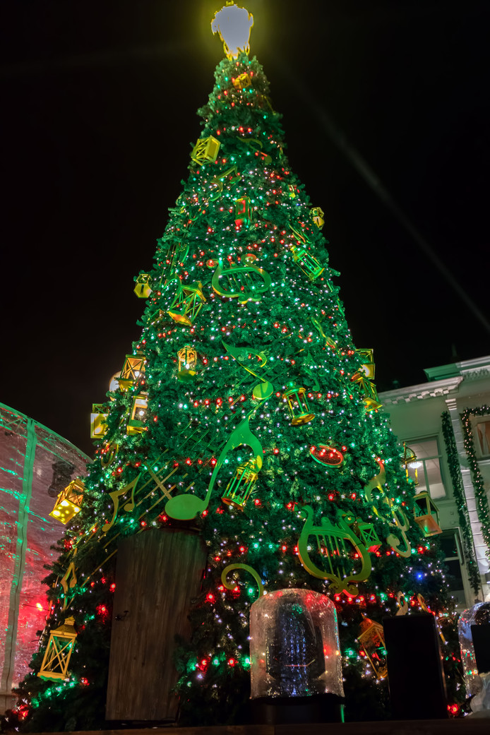 Start van Betoverend Breda op de Grote Markt in Breda. De grote kerstboom baadt in het licht, nadat de lichtjes zijn ontstoken door de mysterieuze Careltje. Die kruipt ongezien via de deur onderin de boom naar binnen om de lichtjes aan te steken.