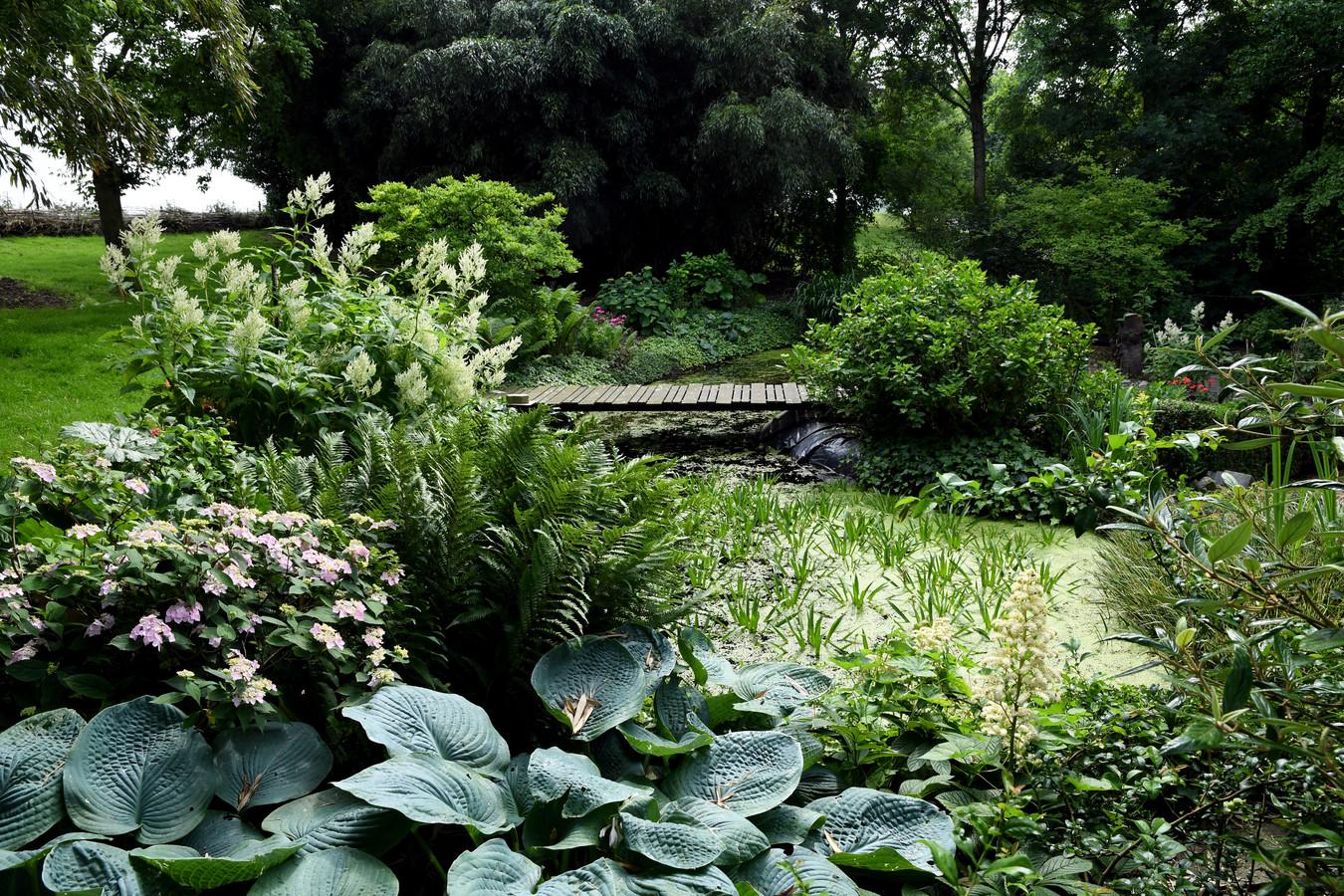 Vanuit de vijver klinkt vrolijk gekwaak van de kikkers. Het is een levenswijze zo'n grote tuin, maar het blijft veel werk.