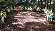 Kleuters De Wollewei trekken voortaan maandelijks het bos in