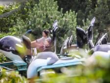 """Boudewijn Seapark blijft noodgedwongen dicht in herfstvakantie: """"Oneerlijke concurrentie dat dierentuinen wél mogen openen"""""""