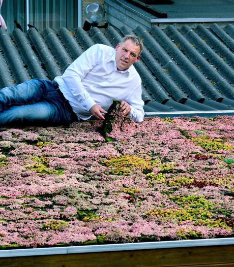 Barendrechter wil in één klap honderden schuurtjes van burgers voorzien van groen dak