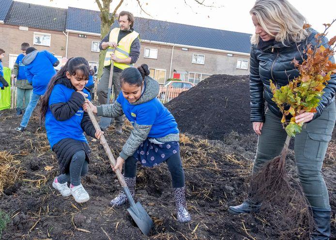 De 8-jarige meiden Rusul Aldosary (l) en Ziyanah Imamdi van basisschool De Leeuwenburch in Middelburg planten met hulp van juf Sandra Romeijn van groep 5 een boompje voor het minibos op hun schoolplein.