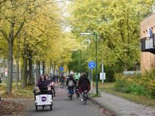 Houtens VVD-raadslid Vis: 'Fietsgemeente Houten mag belang van auto niet uit het oog verliezen'