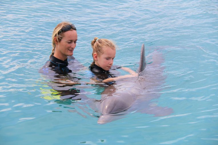 Joke Vangoidsenhoven volgde eerder al dolfijnondersteunde therapie.
