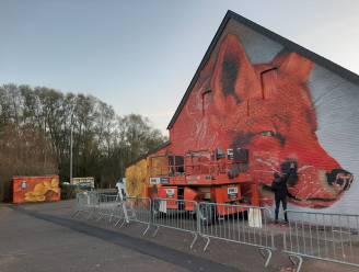 """Lokale graffiti-artiest maakt kunstwerk voor de stad: """"Mijn droom? Een volledig flatgebouw beschilderen"""""""