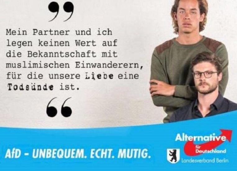Homoposter van de AfD. Beeld