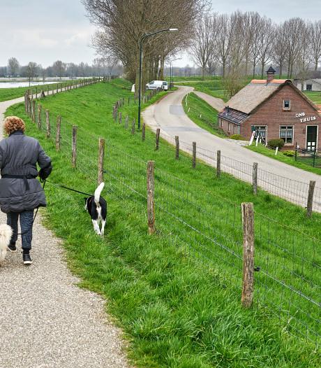 VVD: 'Liever dijk wat hoger dan boer uit uiterwaarden jagen'