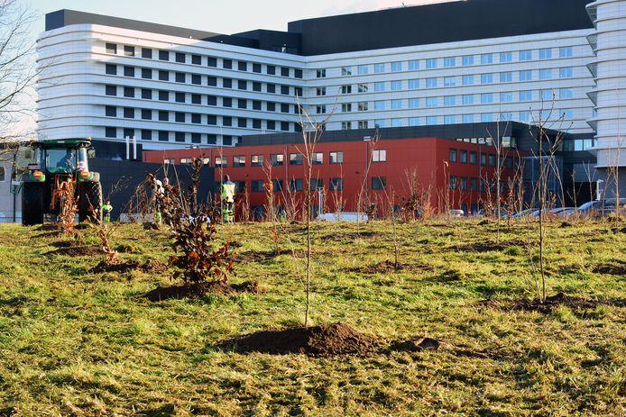 Wie niet komt opdagen voor een geplande opname in het AZ Jan Palfijn riskeert een administratieve vergoeding van 100 euro te moeten betalen.