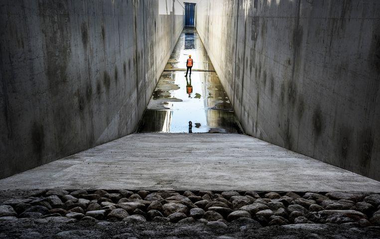 De Deltagoot is 300 meter lang, 10 meter diep en 5 meter breed. Beeld Raymond Rutting / de Volkskrant