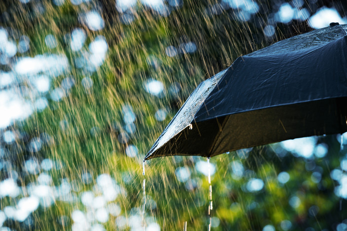 De paraplu is de komende dagen geen overbodige luxe