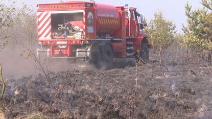 Brand op militair schietterrein in Oost-Limburg na uren blussen onder controle: kwaad opzet niet uitgesloten