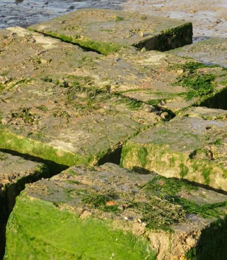 Zeeuwse baggerdijk in de race voor prijs