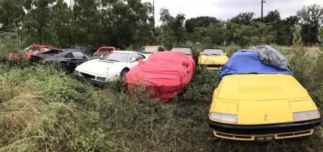Waarom deze 13 Ferrari's in een veld staan weg te roesten