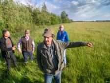 Kooikers bezorgd over windmolens in polder: 'Dan is het onherroepelijk gedaan met trekvogels'