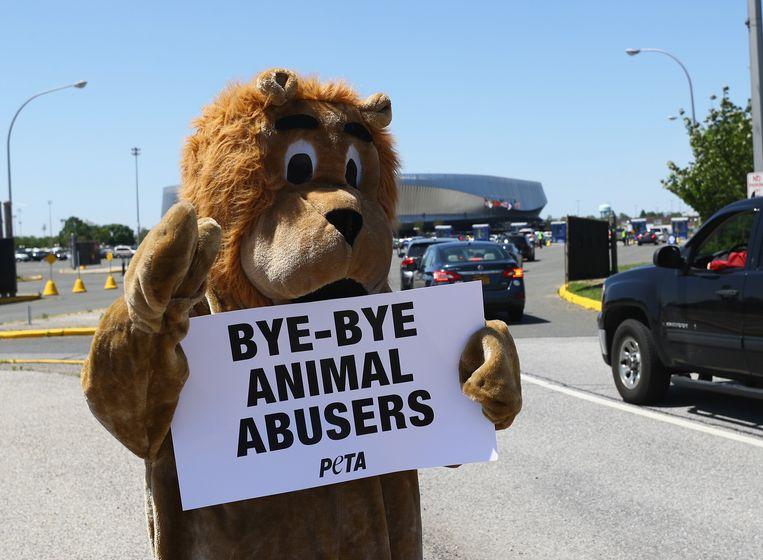 'Doei doei dierenmisbruikers'. Dierenrechtenorganisatie Peta juicht het einde van de Ringling Brothers toe. Beeld AFP