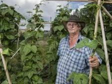 André Wonink is nog niet klaar met de moestuin in Hengelo