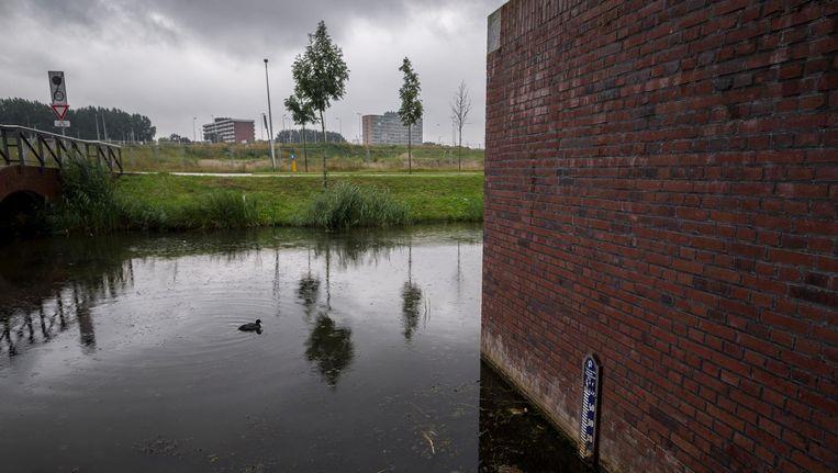 Als een van de binnendijken het begeeft, loopt de Buikslotermeer vol en kan het water met een halve meter per uur stijgen tot een hoogte van minstens twee meter. Beeld Rink Hof